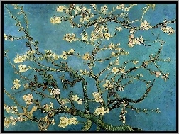 Bloom, Branches, Almond, Vincent Van Gogh, In
